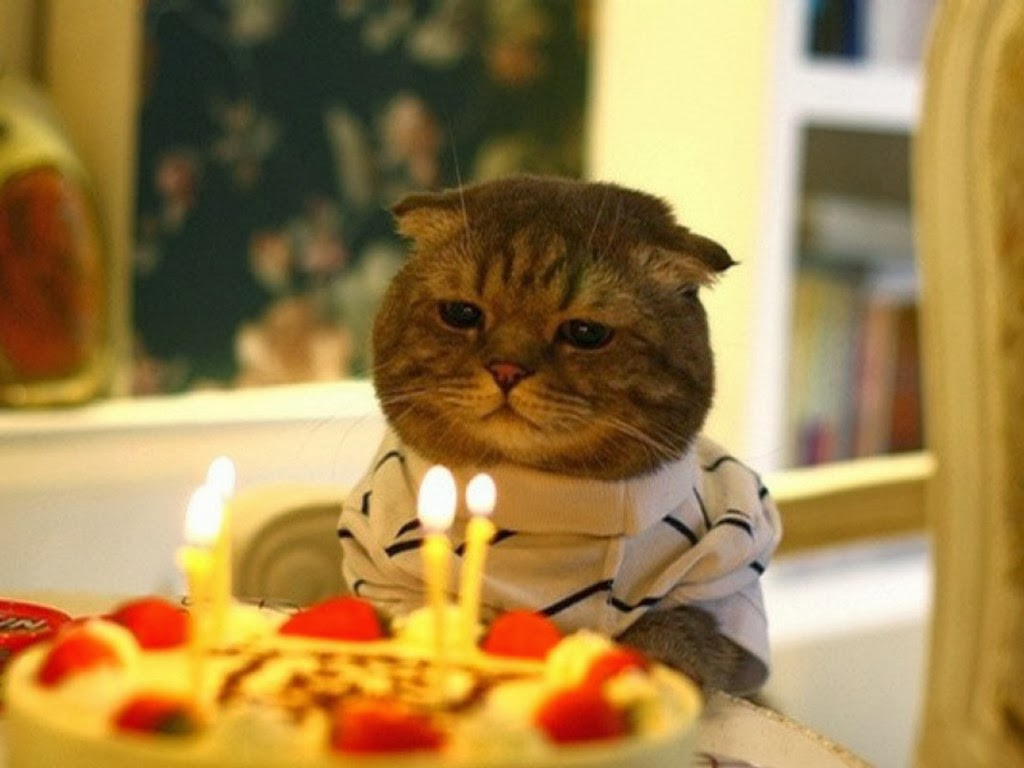 авы про день рождения